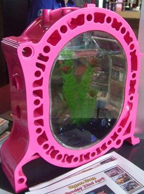 Scp fish tanks for Pink fish tank